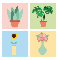 set of plant flowers vase and pot decoration room vector image