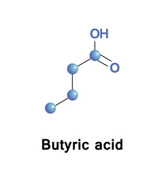 butyric acid or butanoic vector image