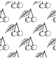cherries seamless pattern black hand drawn vector image