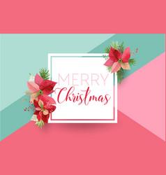 christmas winter poinsettia flower banner vector image