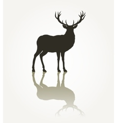 Deer animal silhouette vector