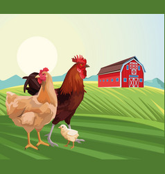 Farming hen chicken and rooster barn sunny day vector
