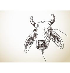 Long ears of cattle vector