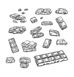 pieces black and white chocolate bar vector image