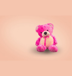 pink teddy bear vector image