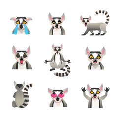 polygonal lemur icon set vector image