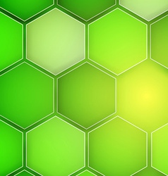 Abstract green background hexagon vector