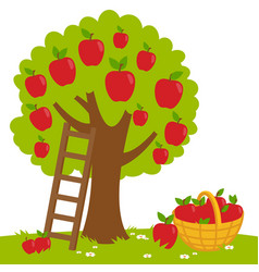 Apple tree and basket with apples vector