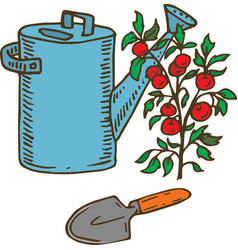Blue watering can trowel and tomato vector