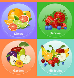 colourful fruits banners set vector image