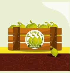 Lemon fruit always fresh in wood basket vector