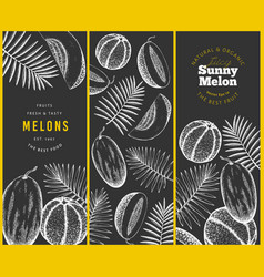 melons and watermelons with tropical leaves vector image