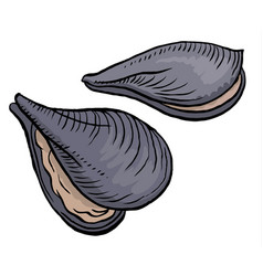 oysters isolated vector image