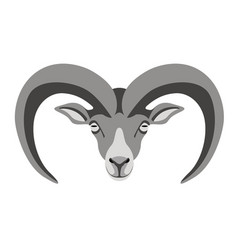 ram face front view vector image