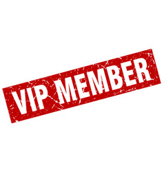 square grunge red vip member stamp vector image