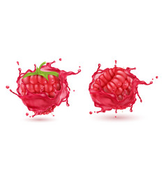 3d realistic raspberries in splashing juice vector image