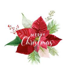 Christmas winter poinsettia flower card vector