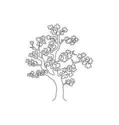 one continuous line drawing beauty cherry vector image