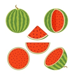 Set of juicy whole watermelons and slices in flat vector image