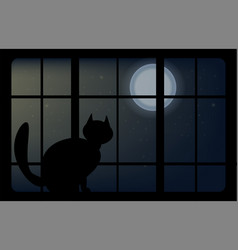 animal cat sits on the window vector image