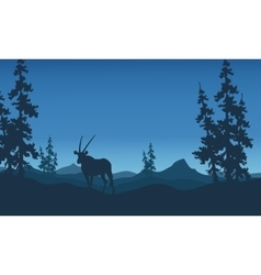 Antelope silhouettes beautiful landscape vector