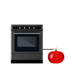 kitchen gas stove with cylinder vector image