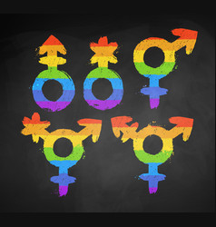 set of gender lgbt symbols vector image