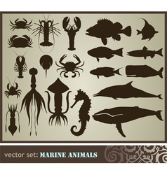 marine animals vector image