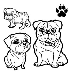 Dog cartoon and dog paw print coloring book vector