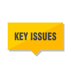 Key issues price tag vector