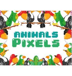 Pixel exotic birds vector