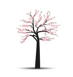 Tree sakura vector