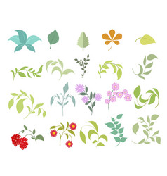 Floral elements set vector