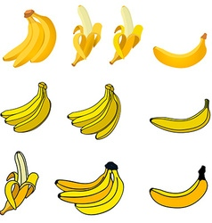 Set of the fresh banana icons vector image