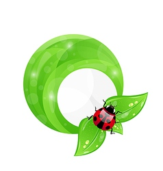 Green round frame with leaf elements and ladybug vector image vector image
