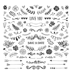 Floral elements collection vector image vector image