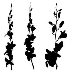 long orchids silhouettes vector image vector image