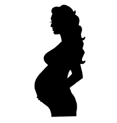 pregnant woman isolated vector image