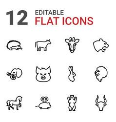 12 mammal icons vector image