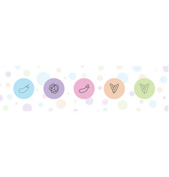 5 vegan icons vector
