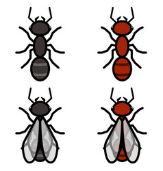 ants logos symbols icons signs set vector image