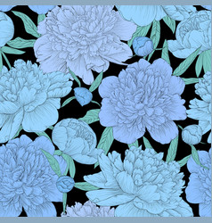 beautiful seamless background blue peonies vector image