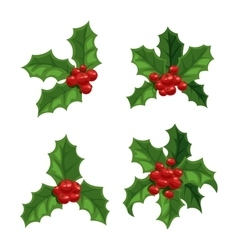 Christmas berry decoration set vector image