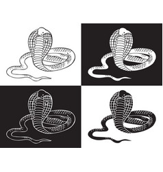 Cobra snake on black and white background vector