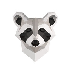 low poly raccoon vector image