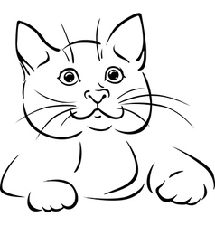 cat - black outline vector image
