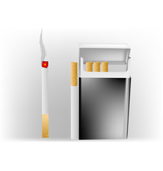 Cigarette in a pack vector