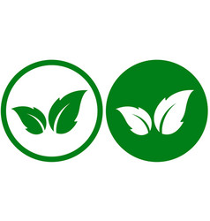 green icon with leaf vector image vector image