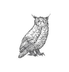 Hand drawn halloween scary owl vector