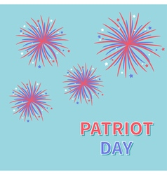 Patriot day Fireworks blue sky Star and strip vector image